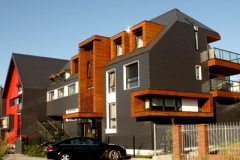 płyty drewnopodobne dom